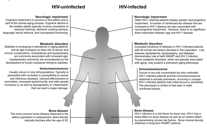 HIV-infection initiates a premature aging response