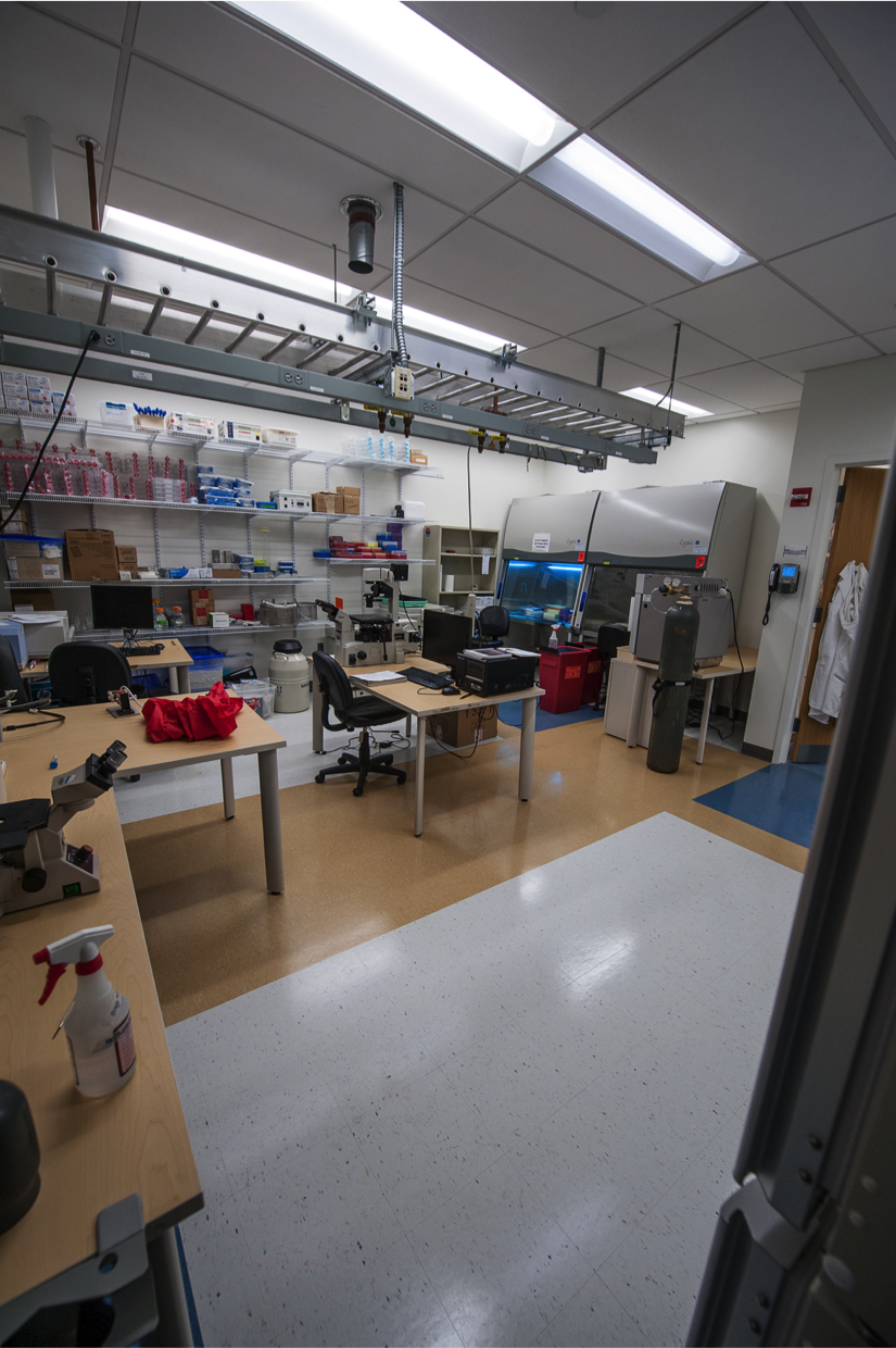 cellular diagnostics and imaging lab