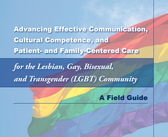 Advancing Effective Communication, Cultural Competence, and Patient- and Family-Centered Care for the Lesbian, Gay, Bisexual, and Transgender (LGBT) Community-A Field Guide