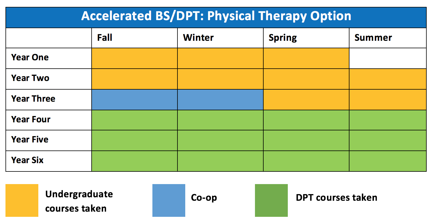 accelerated bs  dpt  physical therapy option