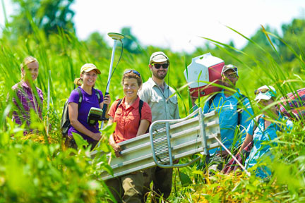 BEES Students in the field