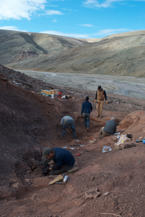 Students dig for fossils at Ellesmere Island in the Canadian Arctic