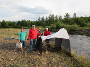 Dr. John Gelhaus collecting aquatic insects with students in Mongolia