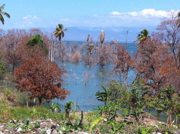 Flooded farms along Lake Enriquillo