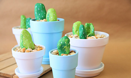 Rock Cactus DIY Gift Idea for Geoscience Major
