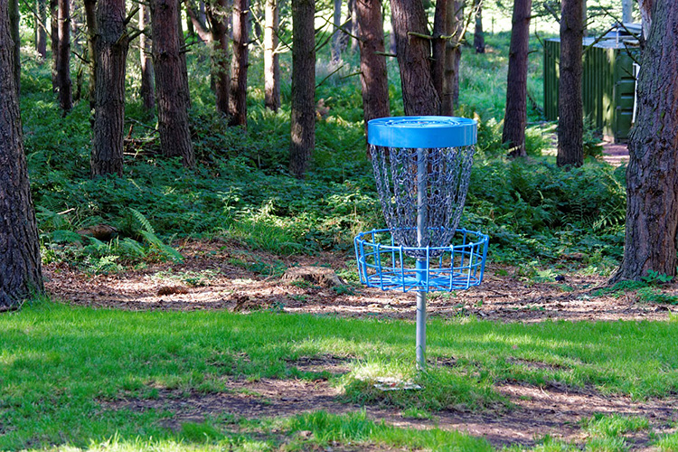 Disc Golf - Sedgley Woods