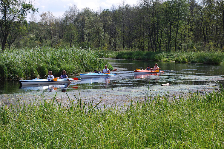 Go Kayaking - Bartram's Garden