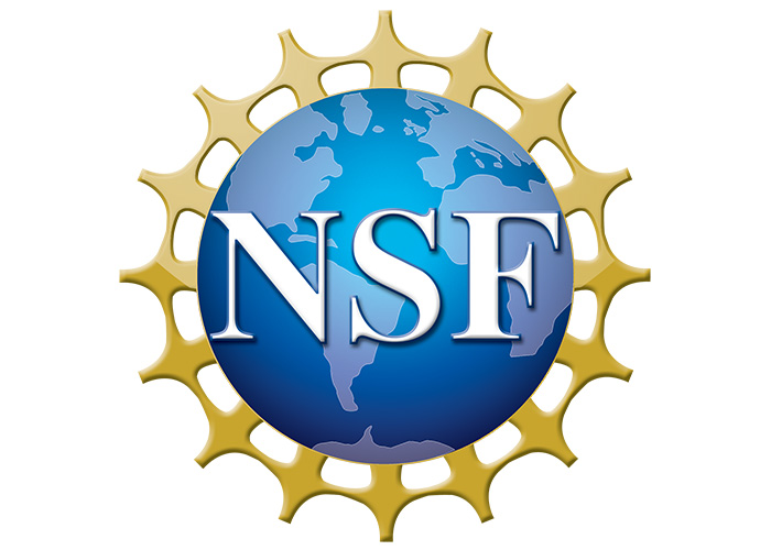 Logo - National Science Foundation