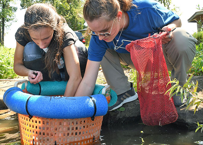 Kathryn Longwill and Lexi Wysocki add juvenile mussels