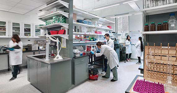Research Community - Biomed Lab