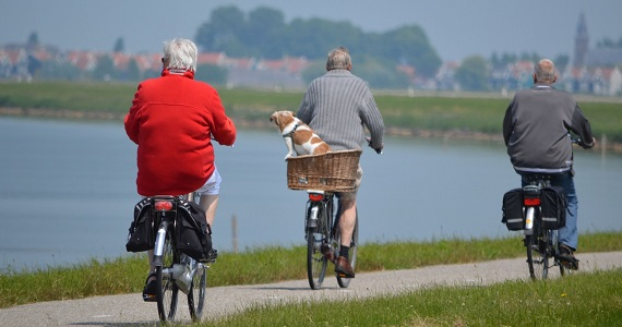 Senior citizens cycling in park