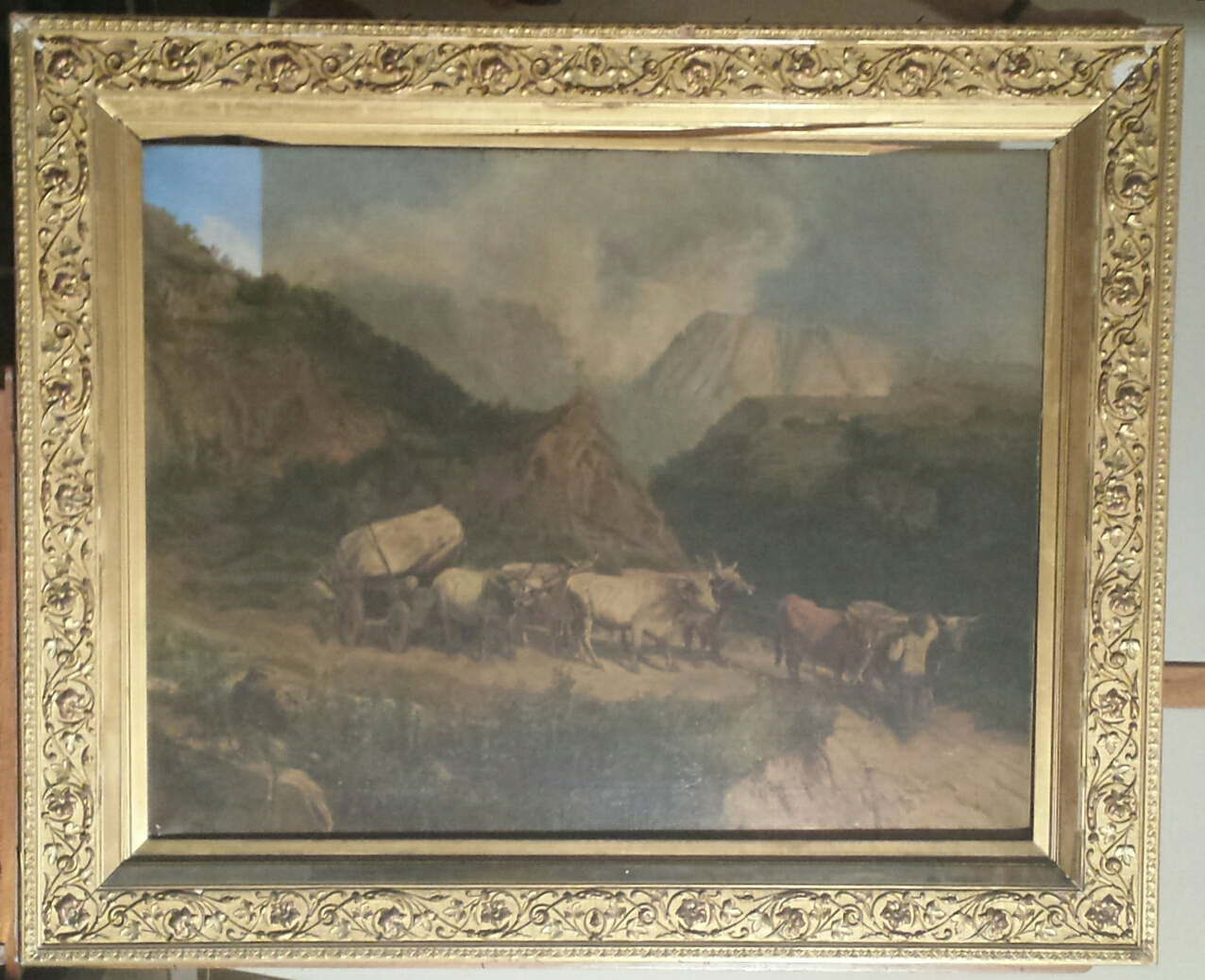 landscape before conservation with frame