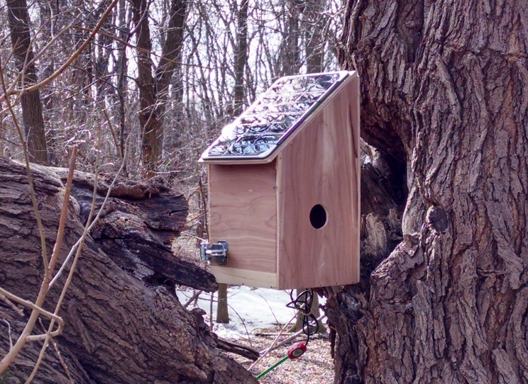 greenSTEM Birdhouse
