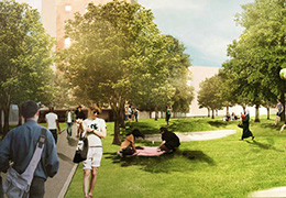 Public Realm Plan University City Rendering