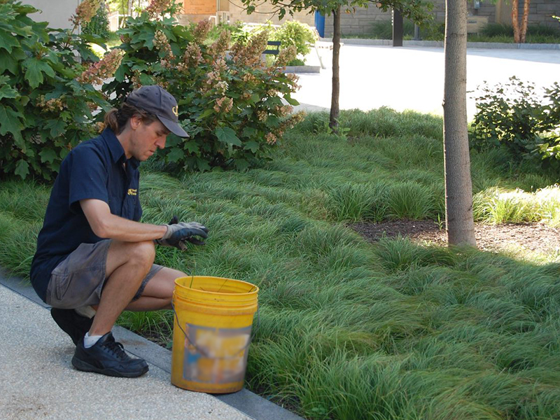 drexel grounds employee working