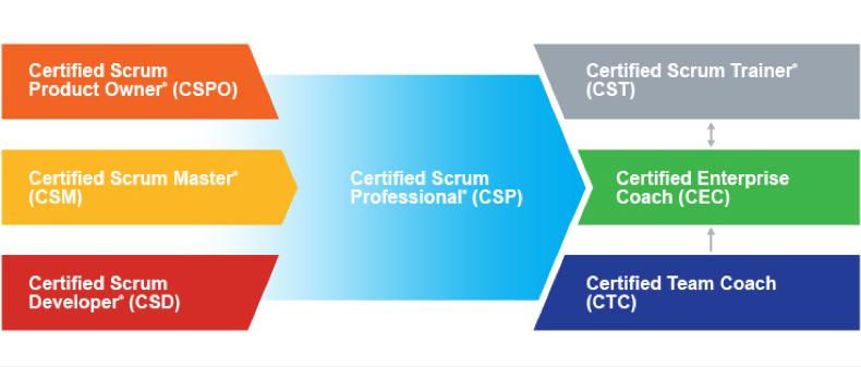 Agile Scrum Project Management for Beginners | Drexel Goodwin