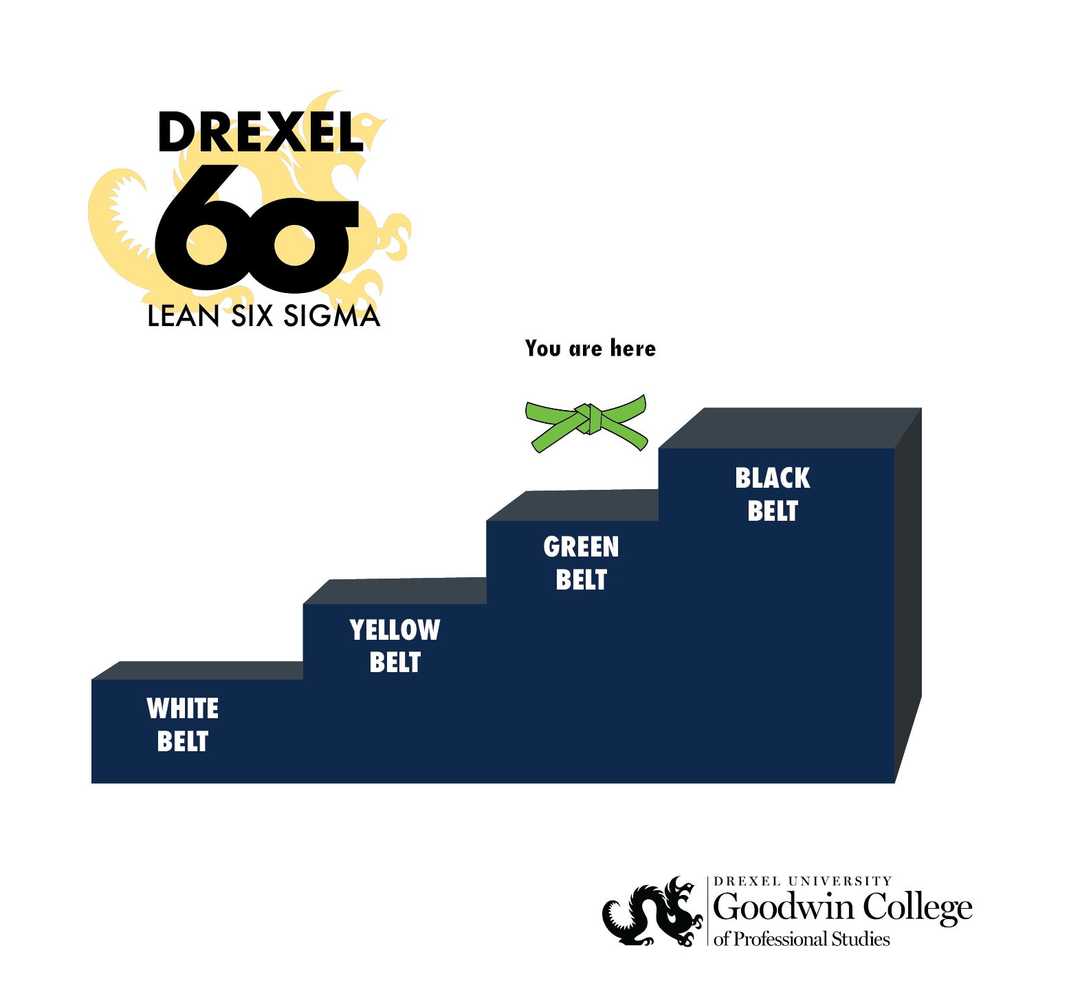 "Lean Six Sigma Ladder with ""You are Here"" on Green Belt step"