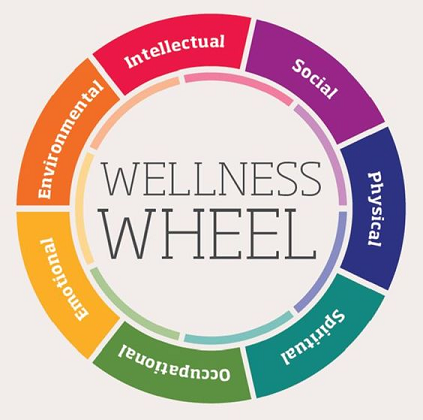 colored wellness wheel with 8 areas of overall wellness, including intellectual, social, physical, spiritual, occupational, emotional and environmental