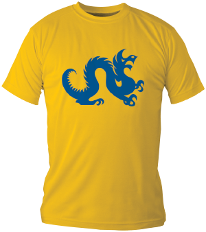 Dragon T-shirt example