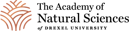 Academy of Natural Sciences primary logo