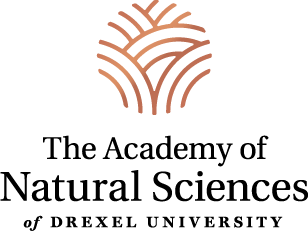 Academy of Natural Sciences vertical logo