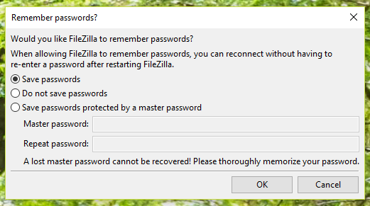 Choose whether or not to save your password, then click 'OK.'