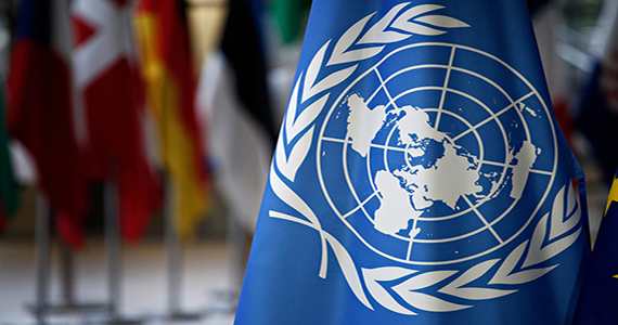 Picture of United Nations flag