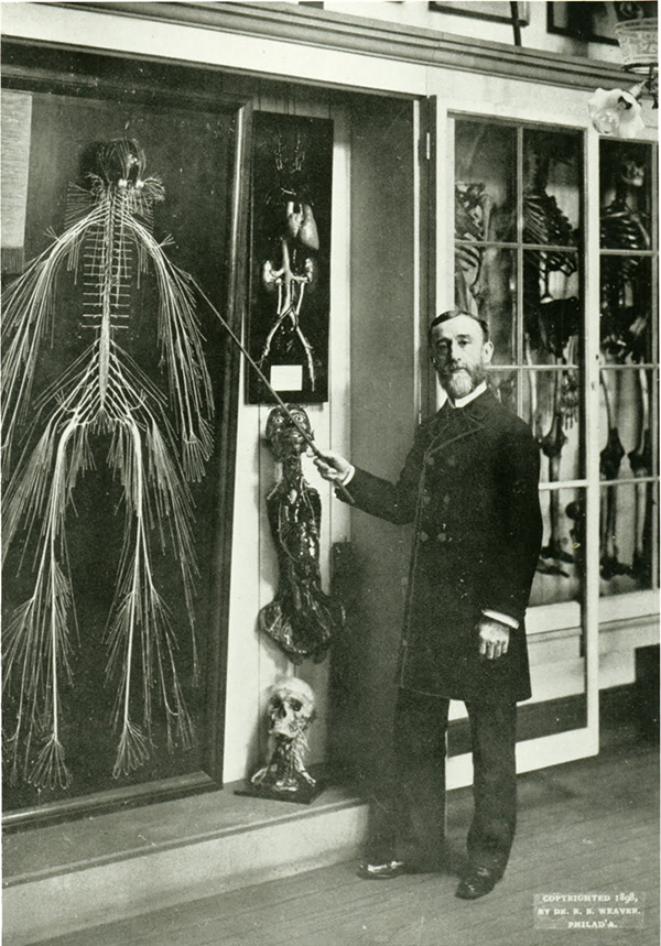 "Rufus Weaver and the nerve dissection titled ""Harriet.""(The Legacy Center Archives and Special Collections)"