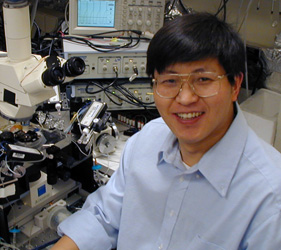 Wen-Jun Gao, PhD, assistant professor, Department of Neurobiology and Anatomy