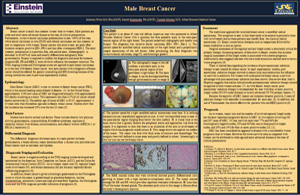 Pathologists' Assistant Research: Male Breast Cancer