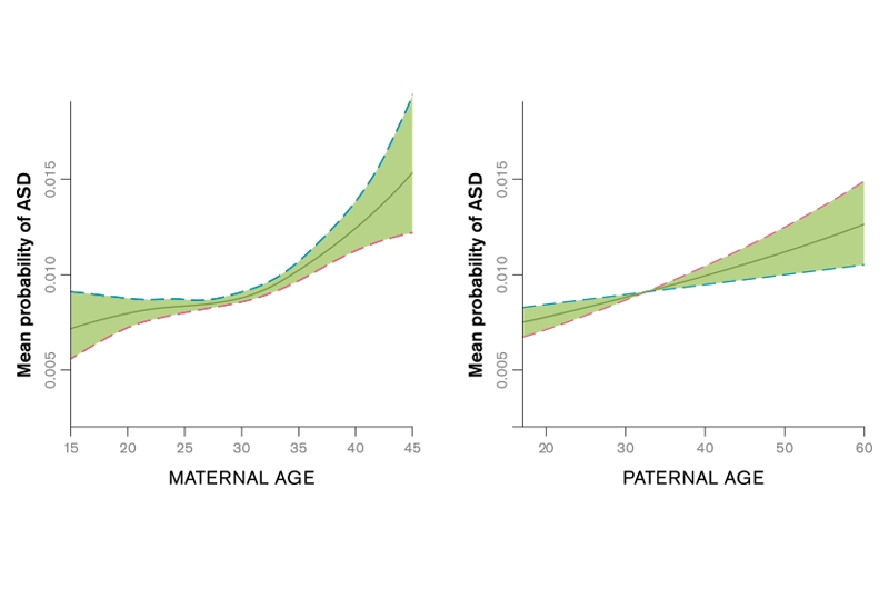 Generalized additive model estimates of probability of ASD by maternal and paternal age (years) in the Stockholm Youth Cohort. The 95% CIs are indicated by dashed lines. Based on Idring et al., International Journal of Epidemiology