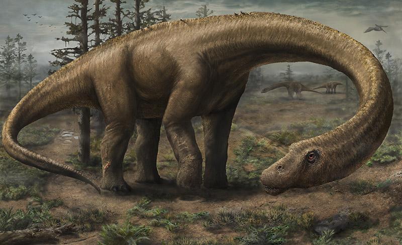 Dreadnoughtus, el mayor dinosaurio que podría haber existido Landscape_For_Web800