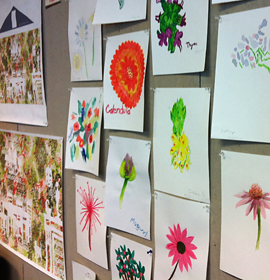 Images of medicinal plants painted by Porch Light participants will be integrated into the mural designs at 11th Street.
