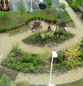 Urban garden designed by Drexel students