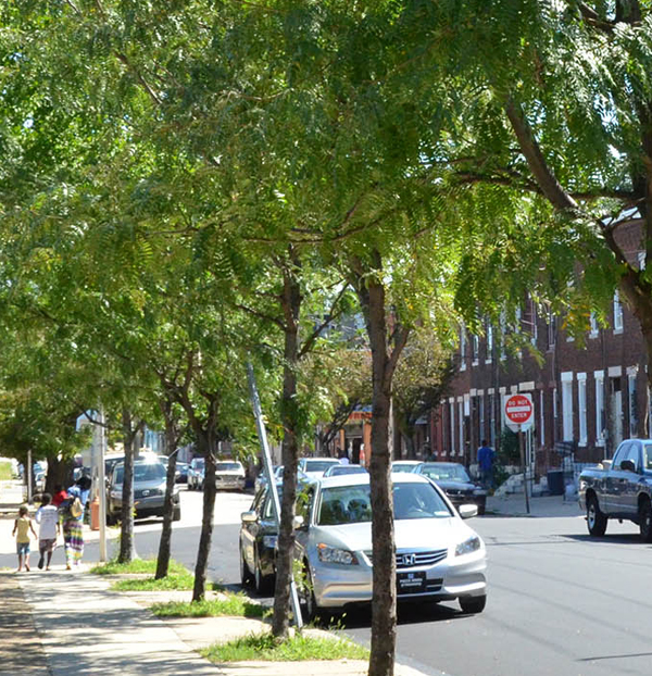 A family walks in an urban neighborhood, Powelton Village, near Drexel University in Philadelphia.