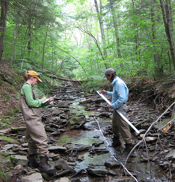 Scientists at the Academy of Natural Sciences of Drexel University will not only conduct watershed research in the Delaware River Watershed, but also guide and coordinate the activities of other research and conservation organizations.