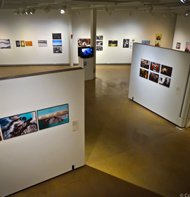 The exhibition is on display in Drexel's Leonard Pearlstein Gallery. Photo credit: Conrad Louis-Charles.