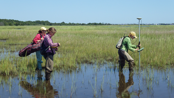Scientists working with Dr. Tracy Quirk use Real Time Kinematic (RTK) satellite navigation with GPS technology to determine marsh elevation in Barnegat Bay, N.J.