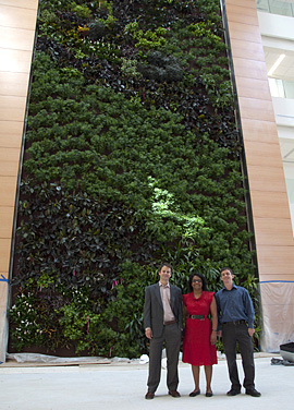 Dr. Michael Waring, Dr. Shivanthi Anandan, and Dr. Jacob Russell stand in front of the biowall.