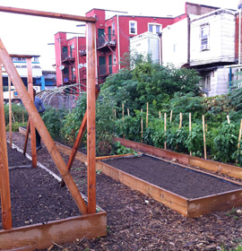 Walnut Hill Community Farm - planter