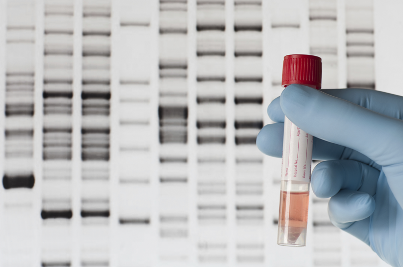 stock image depicting genetics research