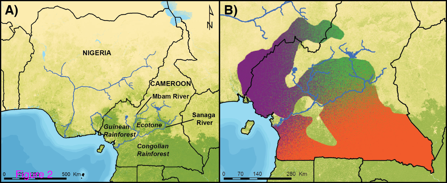 Habitat Types and Chimpanzee Population History in Cameroon and Nigeria. Credit: Sesink Clee et al.