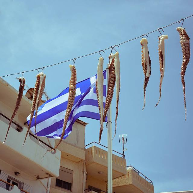 Octopi hanging in Crete, Greece. Photo by Karly Soldner, BS environmental science '17.