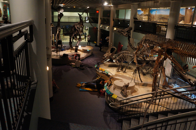 Participants in the Academy of Natural Sciences adult overnight get ready for bed in Dinosaur Hall. Photo by Mike Servedio.