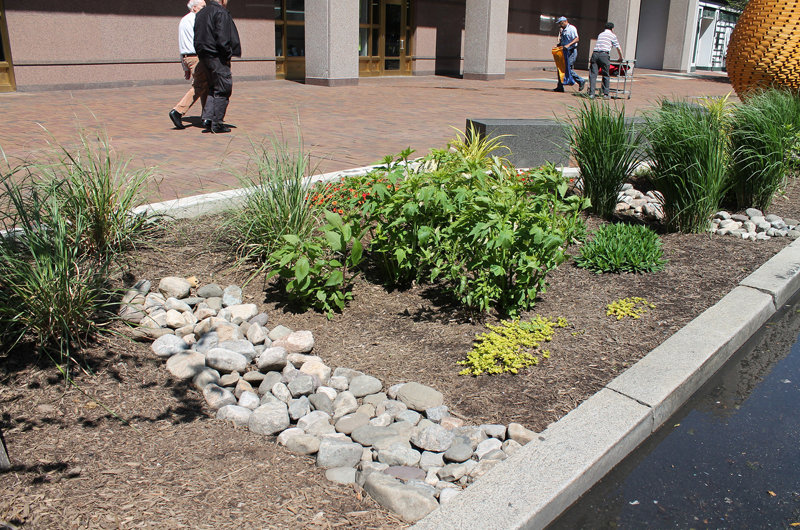 storm water mitigation
