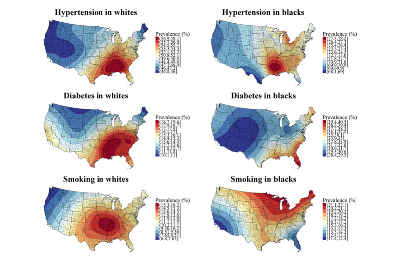 "6 different maps displaying ""heat measures"" of stroke risk factors by race in the United States."