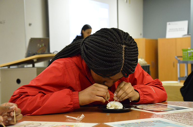 A WINS I student dissects oysters