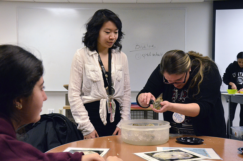 WINS program directors help students dissect oysters