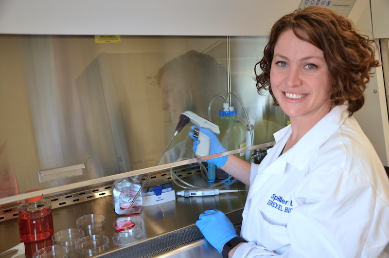 Kara Spiller, PhD, an assistant professor in the School of Biomedical Engineering, Science and Health Systems, has received a prestigious NSF CAREER award.