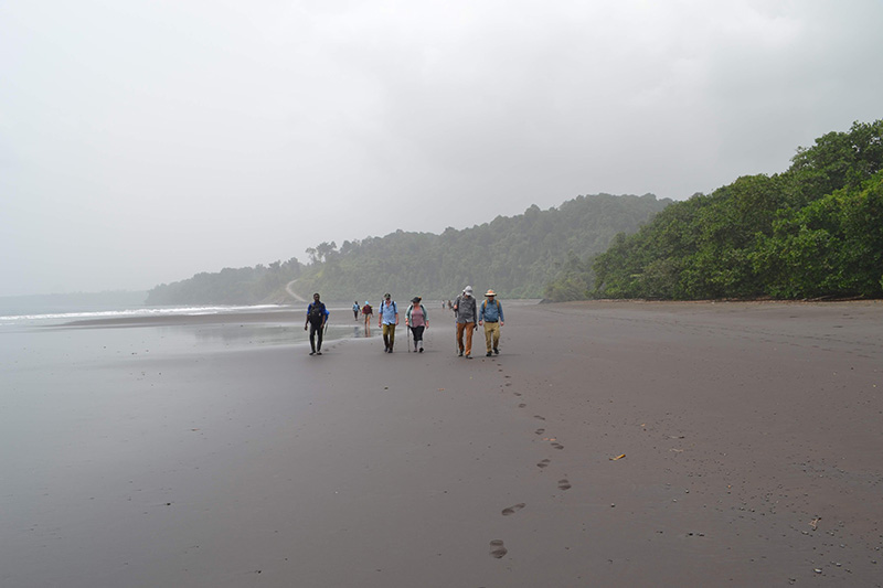 The Drexel delegation hiked to the Bioko program's research site on a beach monitoring marine turtles' nesting grounds. Photo credit: Scott Cooper.